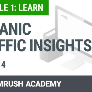 Module 1 Lesson 4 - Organic Traffic Insights