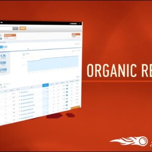 SEMrush Organic Research Positions Report