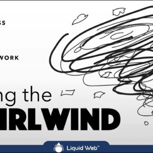 Taming the Whirlwind: Grow Your Business While You're Busy with Client Work