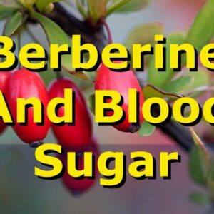 Berberine: This Plant Extract Lowers Type 2 Diabetes Blood Sugar Levels