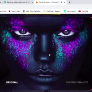 Make Moving Animated  Pictures Within Minutes PhotoVibrance review