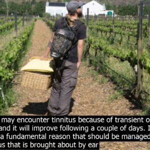 Sinus pressure cause tinnitus to get louder synapse xt in south africa