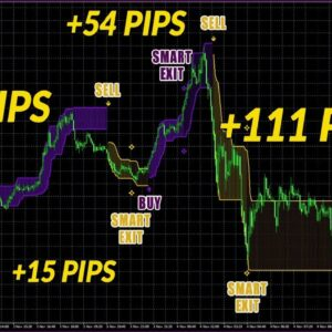 Exynox Scalper Review Demo - New BUY SELL Scalping Indicator by Karl Dittmann